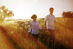 Pares felices que llevan a cabo las manos que caminan a través de un prado, foto teñida imagen de archivo libre de regalías
