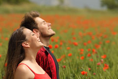 Pares felices que respiran el aire fresco en un campo rojo Imagen de archivo