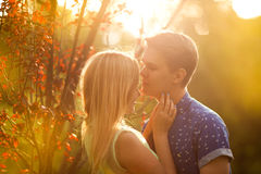 Pares felices que se besan en naturaleza Imagen de archivo