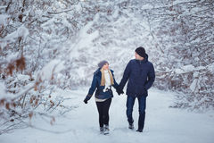 Pares felices que se divierten al aire libre en parque de la nieve Vacaciones del invierno fotografía de archivo