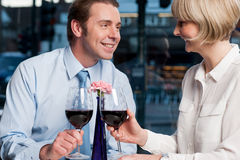 Pares felices que tuestan el vino rojo imagen de archivo libre de regalías