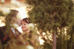 Pares felizes bonitos na natureza Fotos de Stock Royalty Free