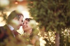 Pares felizes bonitos na natureza Imagem de Stock Royalty Free