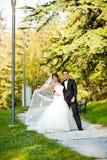 Pares felizes do casamento Imagem de Stock