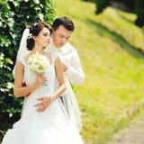 Pares felizes do casamento Imagens de Stock