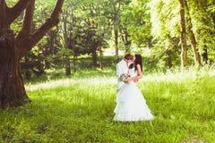 Pares felizes do casamento Foto de Stock Royalty Free