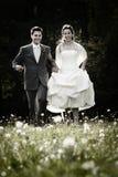 Pares felizes no dia do casamento Foto de Stock