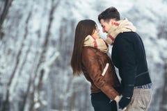 Pares felizes no parque da neve Foto de Stock Royalty Free