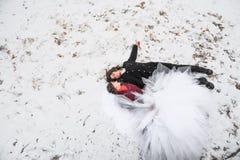 Pares felizes, noivo junto com a mentira da noiva na neve com amor para olhar se fotos de stock