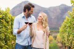 Pares felizes novos que guardam um vidro do vinho e que olham se Fotos de Stock