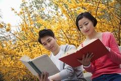 Pares felizes novos que sentam-se em livros de leitura do banco de parque, primavera no parque Foto de Stock