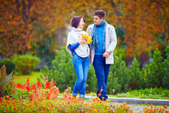 Pares felizes que andam no parque do outono Fotografia de Stock