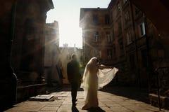 Pares felizes que guardam as mãos no por do sol, noivos p do recém-casado fotos de stock royalty free