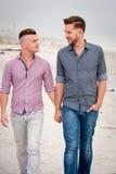Pares gay que caminan llevando a cabo las manos foto de archivo libre de regalías