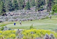Pares Golfing, lago Osoyoos, Columbia Britânica, Canadá fotos de stock royalty free