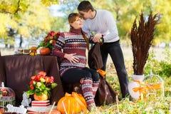 Pares grávidos novos bonitos que têm o piquenique no parque do outono Ha Foto de Stock Royalty Free