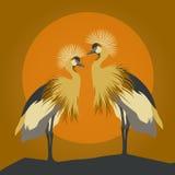 Pares hermosos del vector de cigoñales galantes jovenes Foto de archivo