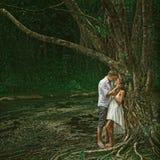 Pares hermosos en bosque dramático imagenes de archivo