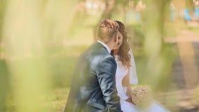 Pares hermosos románticos en el sol, sentándose debajo de las hojas de los árboles de abedul Vistazos felices en uno a Tacto almacen de video