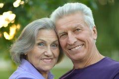 Pares idosos bonitos felizes Imagens de Stock