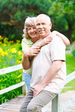 Pares idosos dos séniores Foto de Stock Royalty Free