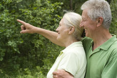 Pares idosos felizes foto de stock