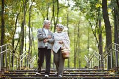 Pares idosos felizes Imagem de Stock