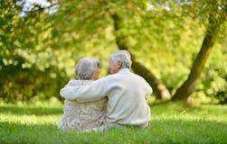 Pares idosos felizes Fotografia de Stock Royalty Free