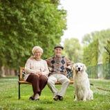 Pares idosos felizes com o cão no banco no parque fotografia de stock