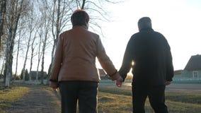 Pares idosos loving que andam no parque no por do sol Próximo há uma estrada Uma mulher em um casaco de cabedal marrom O homem vídeos de arquivo