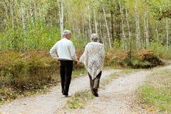 Pares idosos no parque Fotos de Stock Royalty Free
