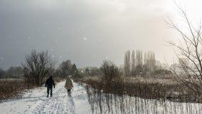 Pares idosos que dão uma volta no parque da cidade Fotografia de Stock Royalty Free