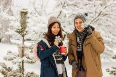 Pares internacionales hermosos que sostienen los copos de nieve y que sonríen en el parque en el invierno en la nieve imagenes de archivo