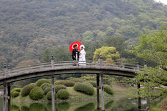 Pares japoneses de la boda Fotografía de archivo libre de regalías