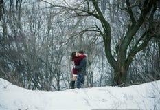 Pares jovenes atractivos en amor en el parque nevoso Imagenes de archivo