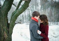 Pares jovenes atractivos en amor en el parque nevoso Foto de archivo libre de regalías