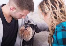 Pares jovenes con el perro Imagen de archivo