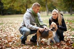 Pares jovenes con el perro en parque del otoño Fotografía de archivo libre de regalías