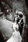 Pares jovenes de la boda en bosque Imagen de archivo