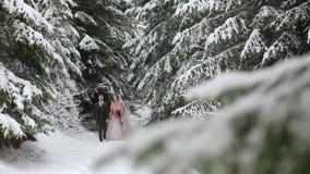 Pares jovenes de la boda que caminan, sonriendo y hablando llevando a cabo las manos en bosque nevoso durante las nevadas Boda de metrajes