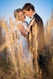 Pares jovenes de la boda que se colocan en un campo del pigweed en el setti Fotos de archivo
