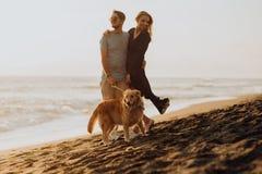 Pares jovenes del inconformista de la risa feliz hermosa con golden retriever en la playa océano una arena Ondas concepte de la l fotos de archivo libres de regalías