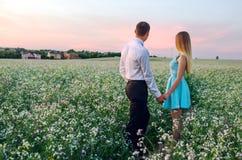Pares jovenes en amor en campo del verano Fotos de archivo libres de regalías