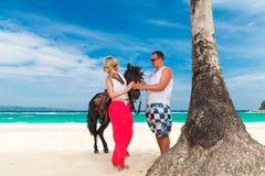 Pares jovenes en el amor que camina con el caballo en una playa tropical Imágenes de archivo libres de regalías