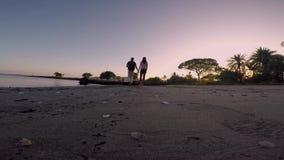Pares jovenes en su luna de miel que camina en la costa que disfruta de la puesta del sol con las cáscaras dispersadas en la play metrajes