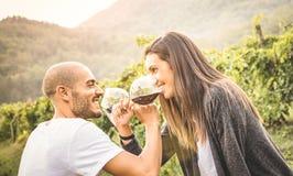 Pares jovenes felices del amante que beben el vino rojo en el viñedo imagen de archivo libre de regalías