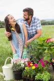 Pares jovenes felices que cultivan un huerto junto Imagenes de archivo
