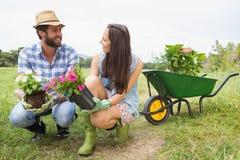 Pares jovenes felices que cultivan un huerto junto Fotos de archivo libres de regalías