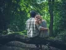 Pares jovenes que abrazan en bosque del inicio de sesión Fotografía de archivo libre de regalías
