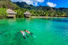 Pares jovenes que bucean sobre el filón al lado de centro turístico en un i tropical Foto de archivo libre de regalías